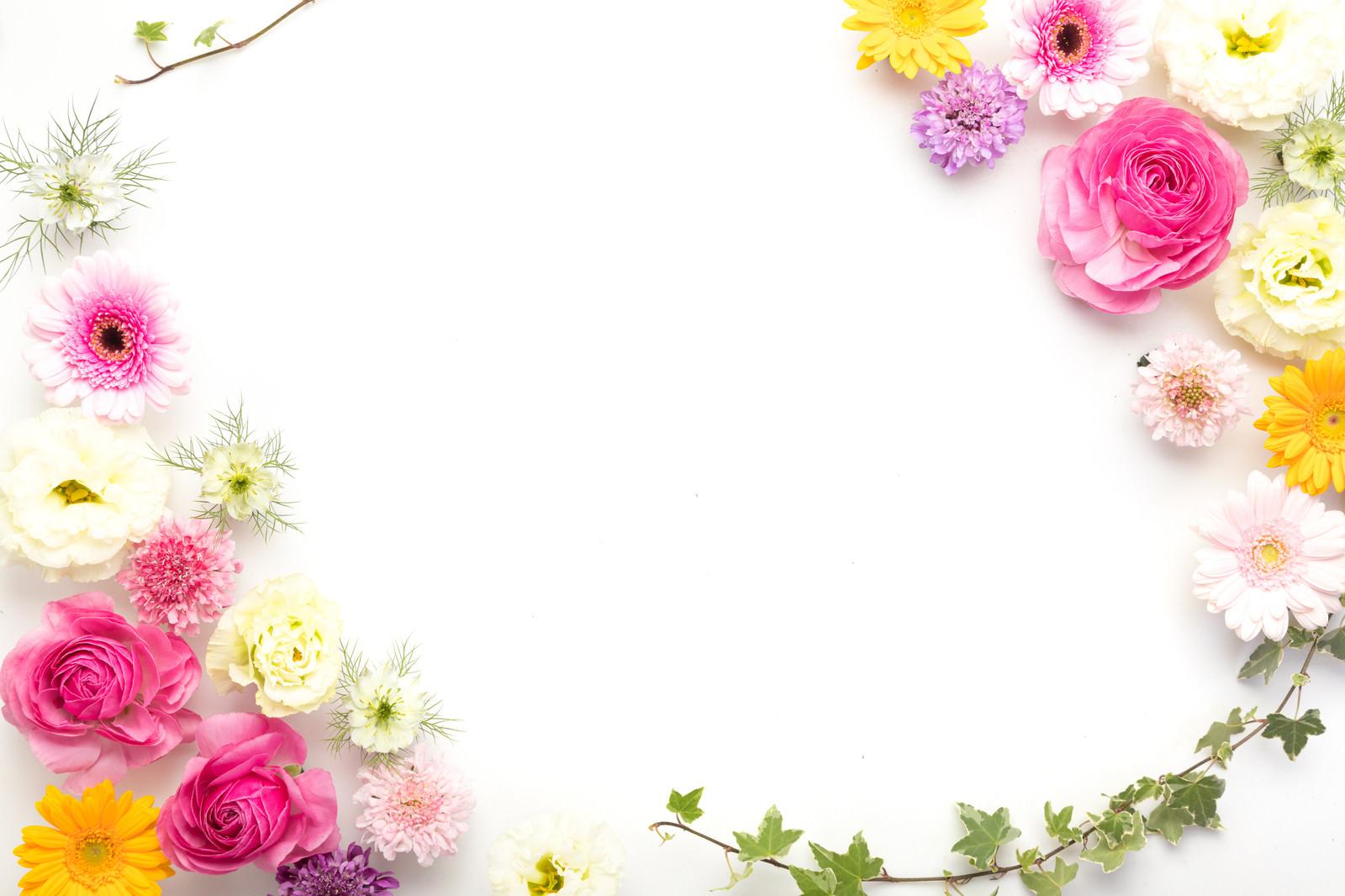 「カラフルな花で彩られたフレーム」の写真