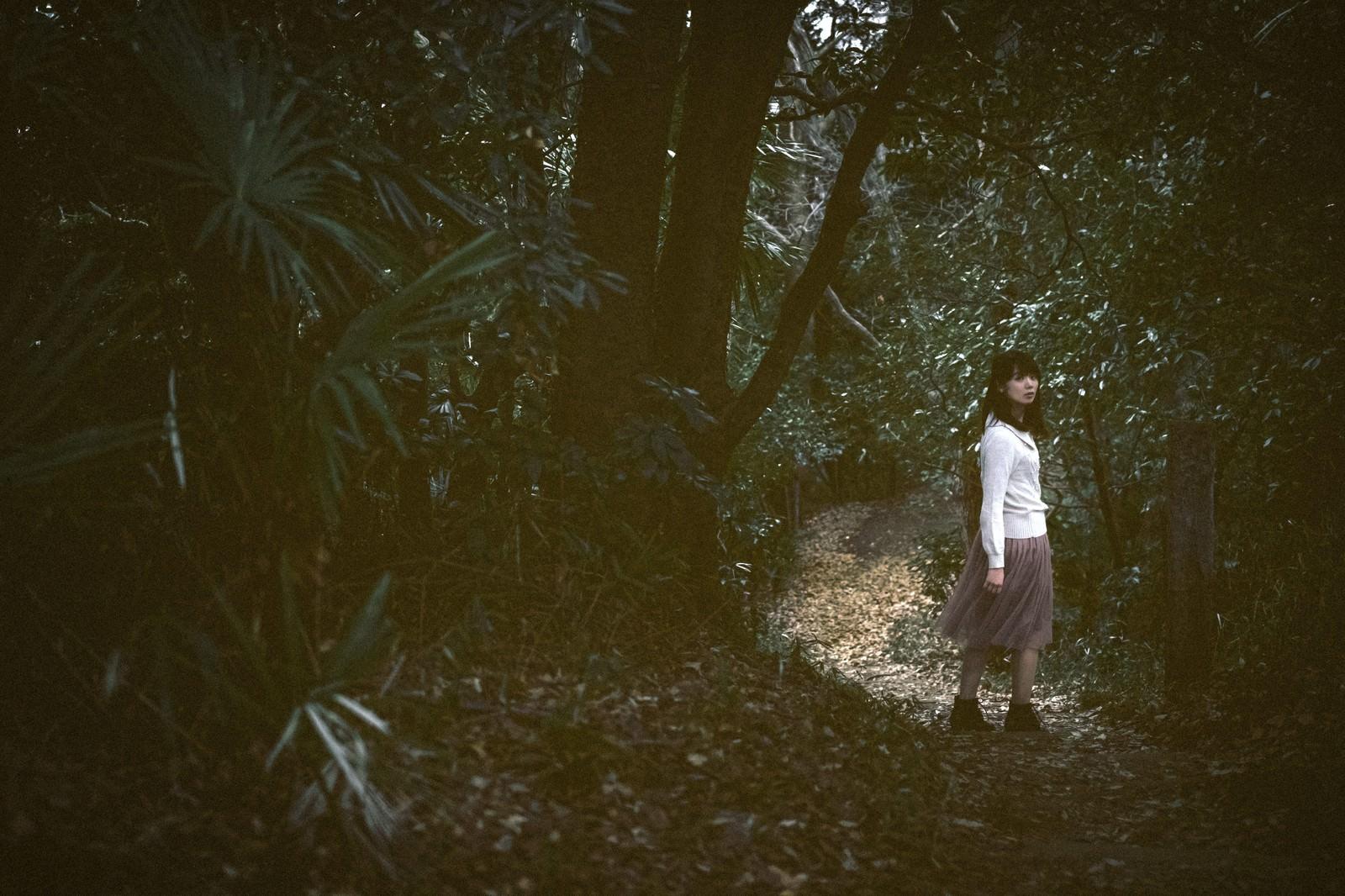 「森に迷い込んだ女性森に迷い込んだ女性」[モデル:白鳥片栗粉]のフリー写真素材を拡大