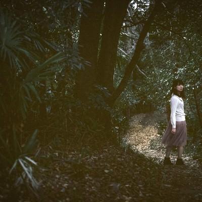 「森に迷い込んだ女性」の写真素材
