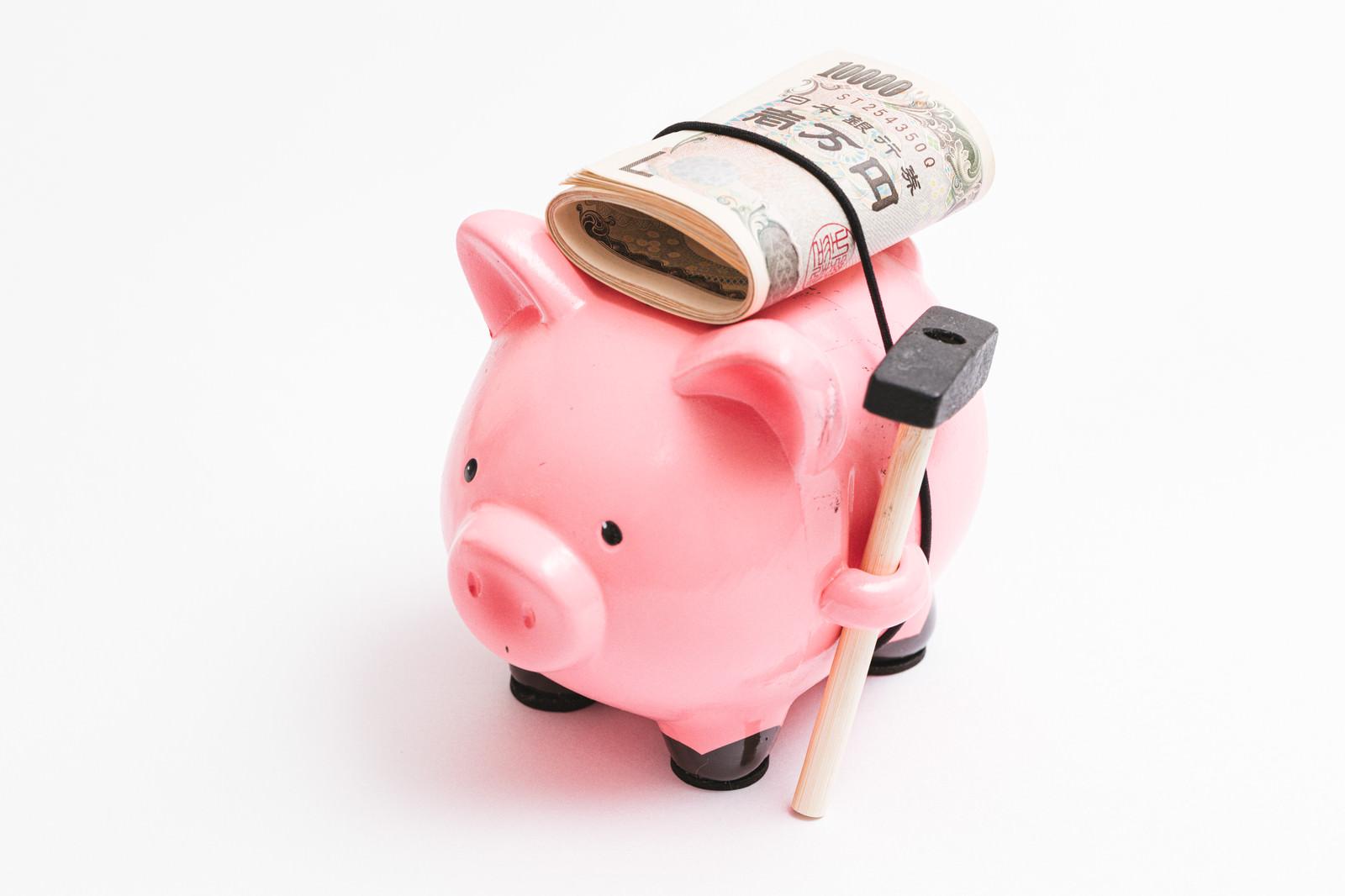 「万札を背負った豚の貯金箱」の写真