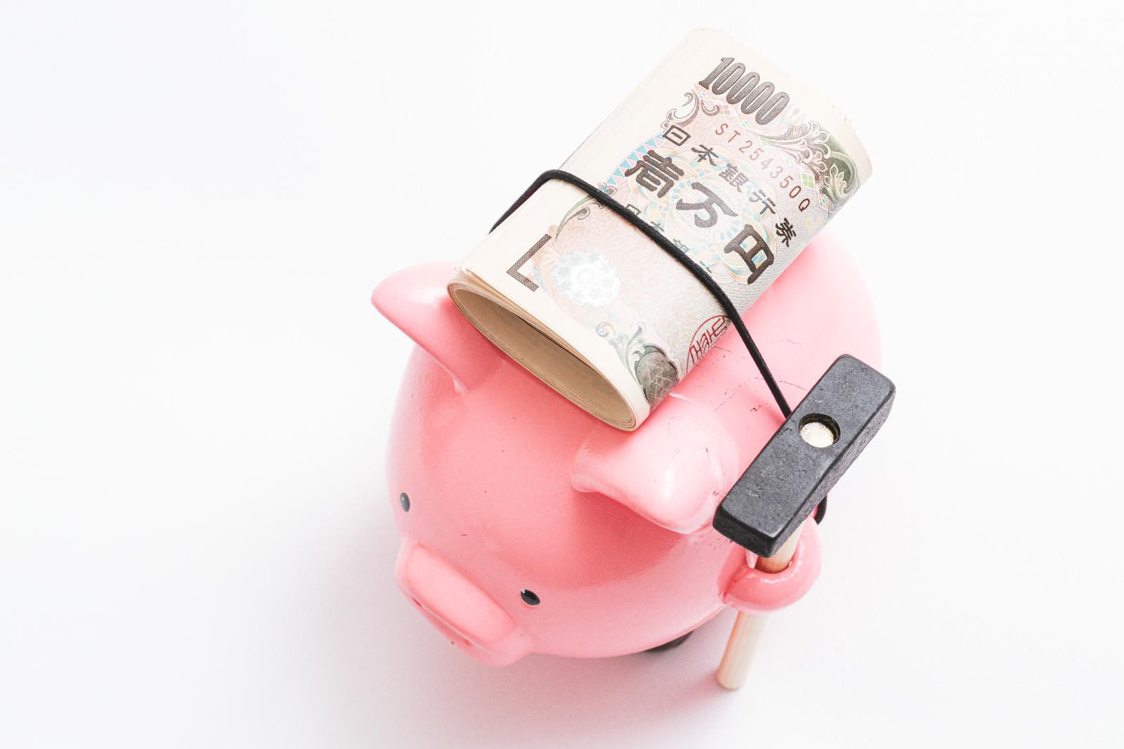 「20万円程背負ってきた豚の貯金箱」の写真