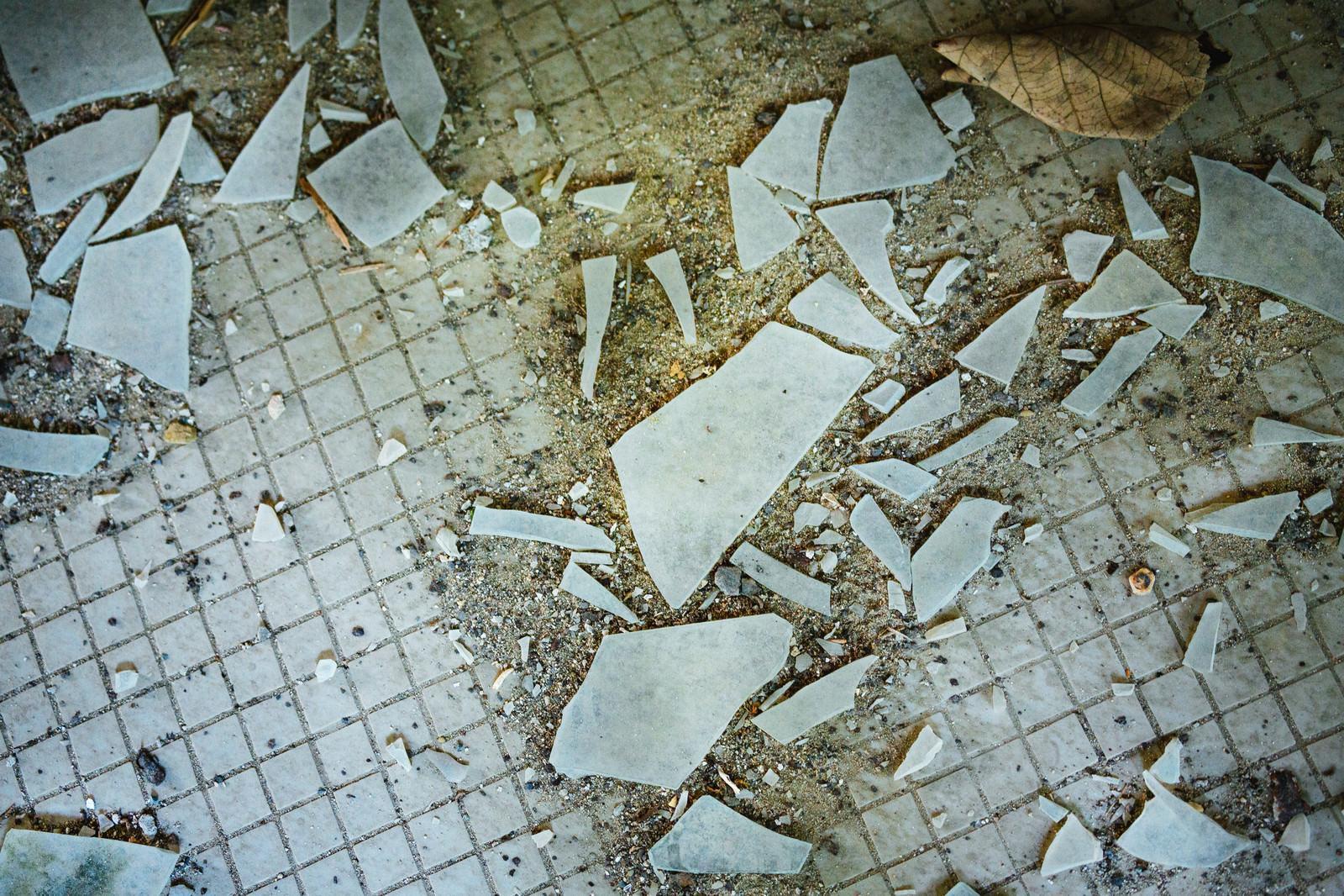 「廃墟のガラス片」の写真