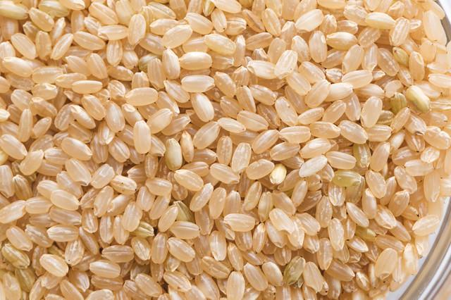 玄米の粒の写真
