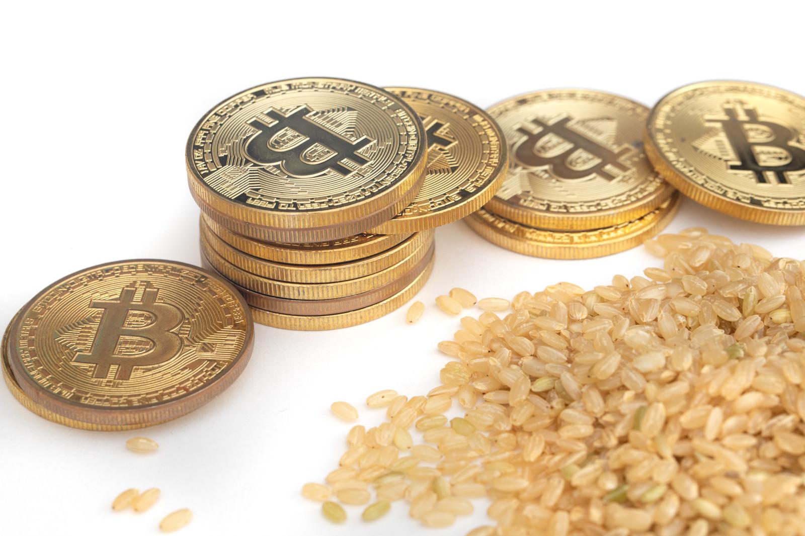 「玄米とビットコインの出会い」の写真