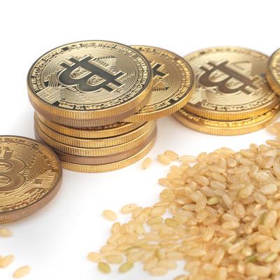 玄米とビットコインの出会いの写真