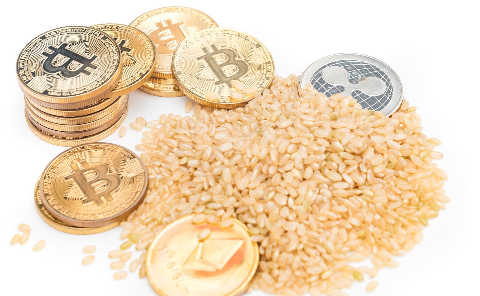 「玄米食べて仮想通貨で億万長者」の写真