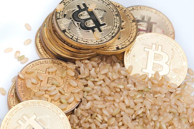 玄米は利確済み(仮想通貨)の写真