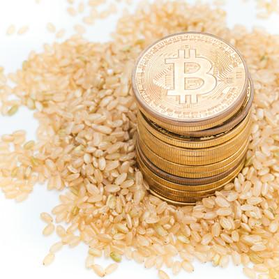 玄米と仮想通貨の玄米婚の写真