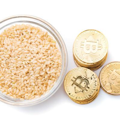 仮想通貨で玄米がうまいの写真