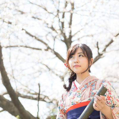 大きな桜の木の下で卒業の記念撮影の写真