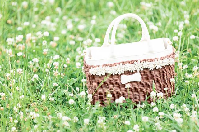 シロツメクサに囲まれてピクニックの写真