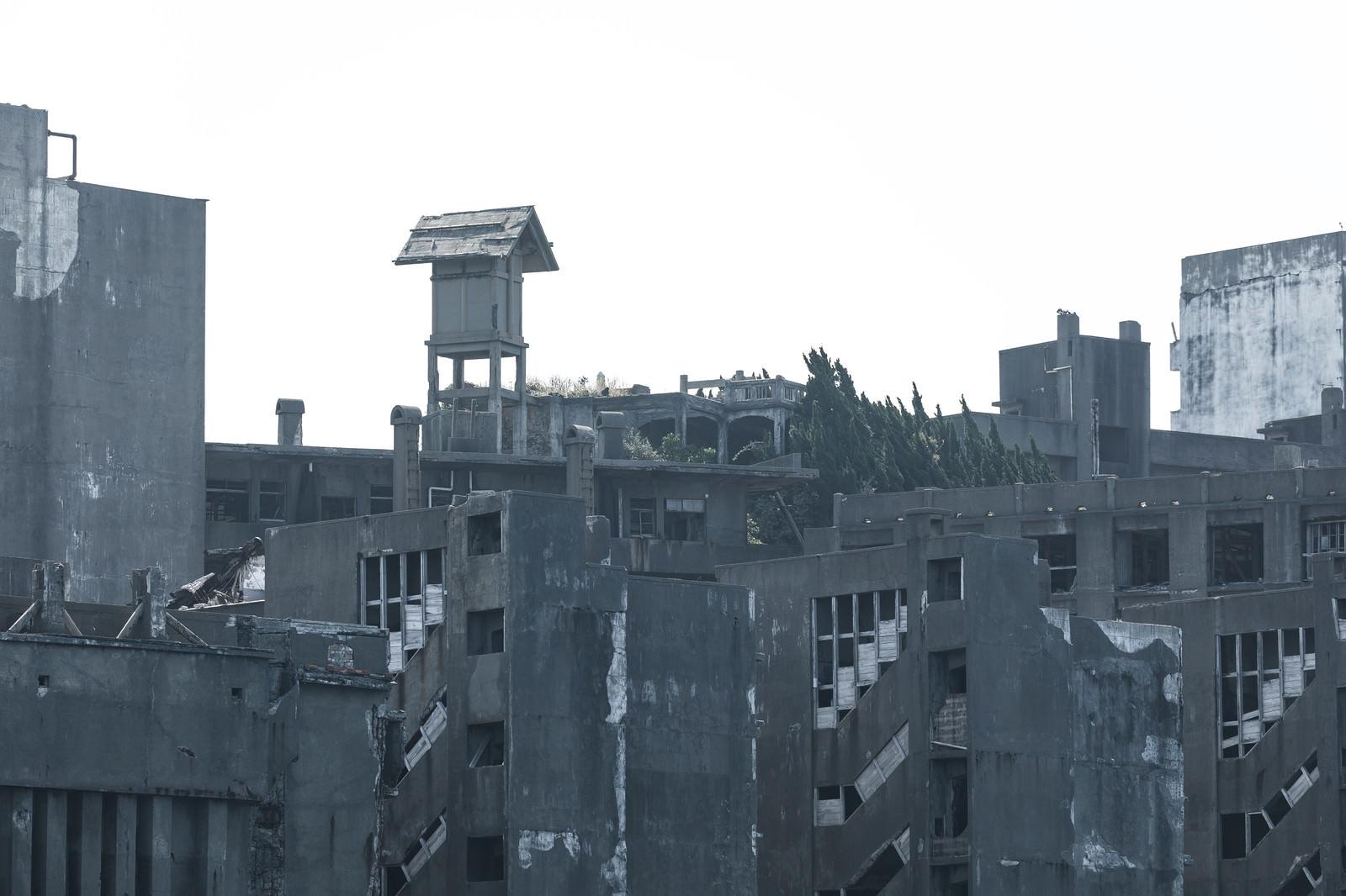 「66号棟啓明寮跡の廃墟感(軍艦島)」の写真