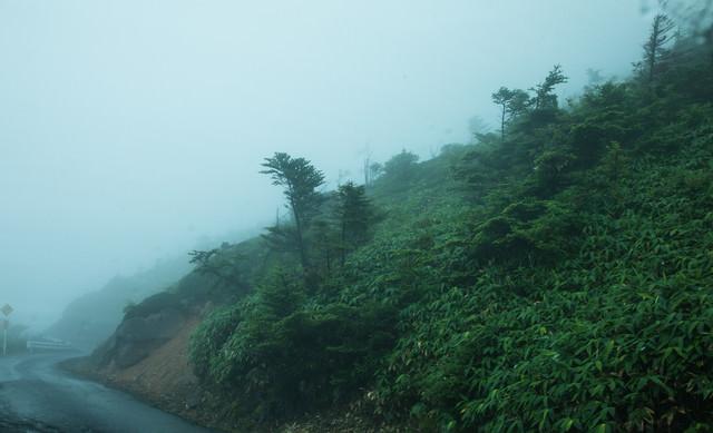 山道の吹き荒れる風雨の写真