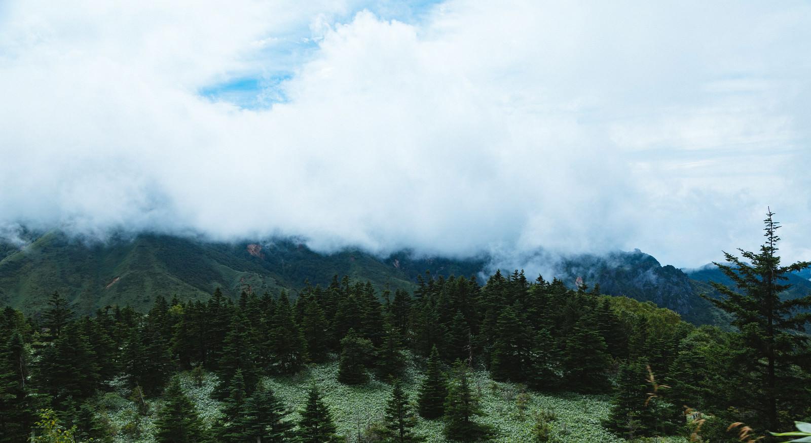 「雲に覆われた渓谷雲に覆われた渓谷」のフリー写真素材を拡大