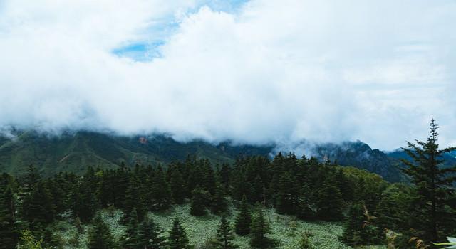 雲に覆われた渓谷の写真