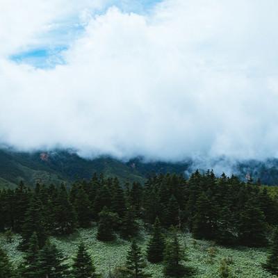 「雲に覆われた渓谷」の写真素材