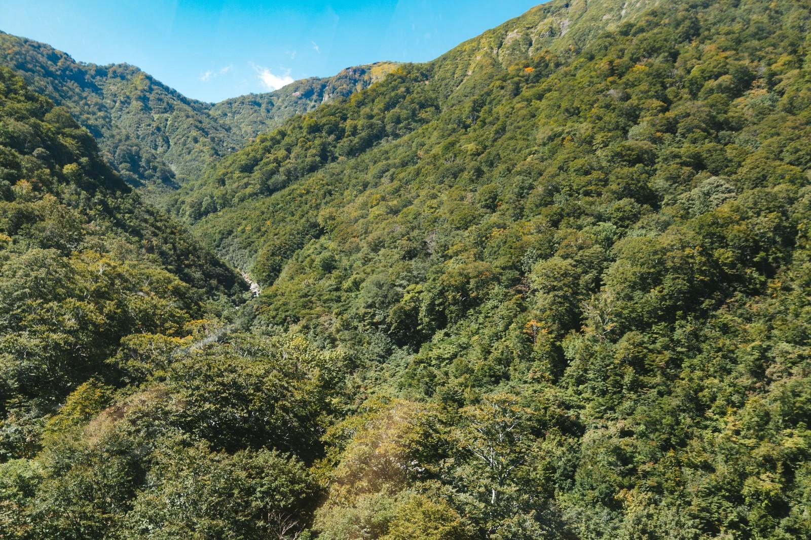 「谷川岳付近の山」の写真