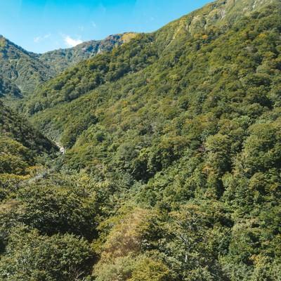 「谷川岳付近の山」の写真素材