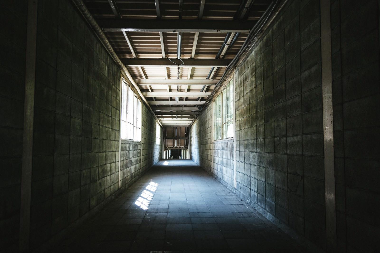「ブロック塀で覆われる土合駅の通路ブロック塀で覆われる土合駅の通路」のフリー写真素材を拡大