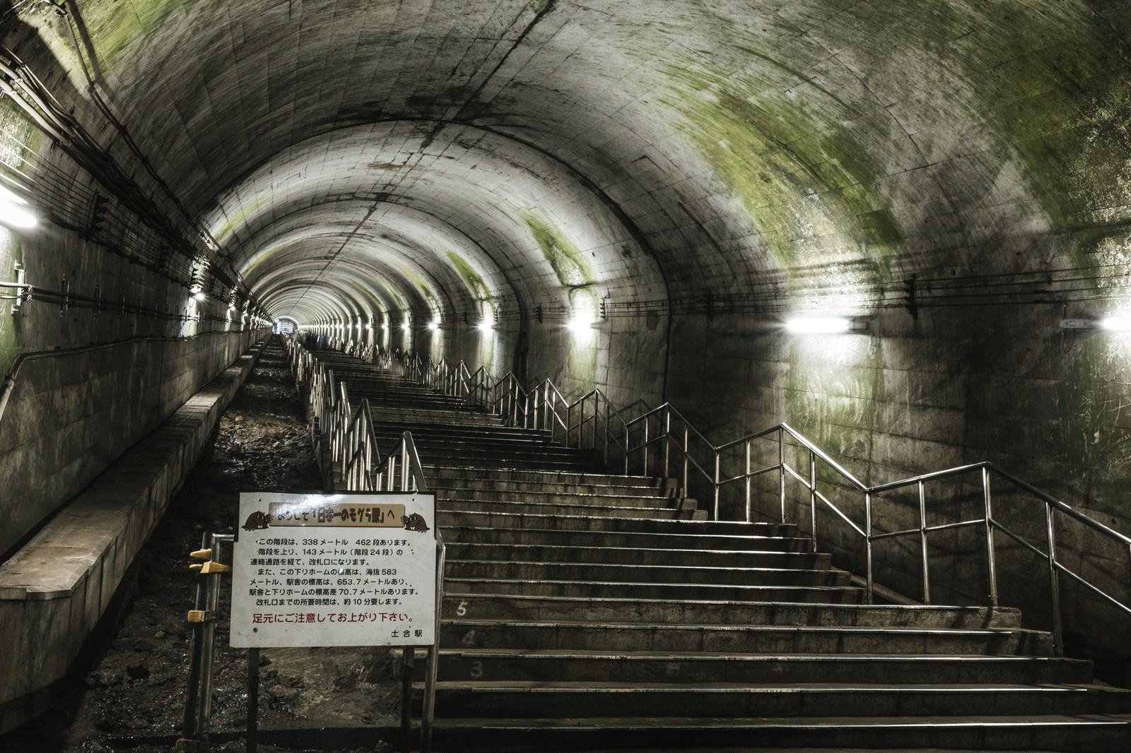 「一直線に伸びる462段の階段(土合駅)」の写真