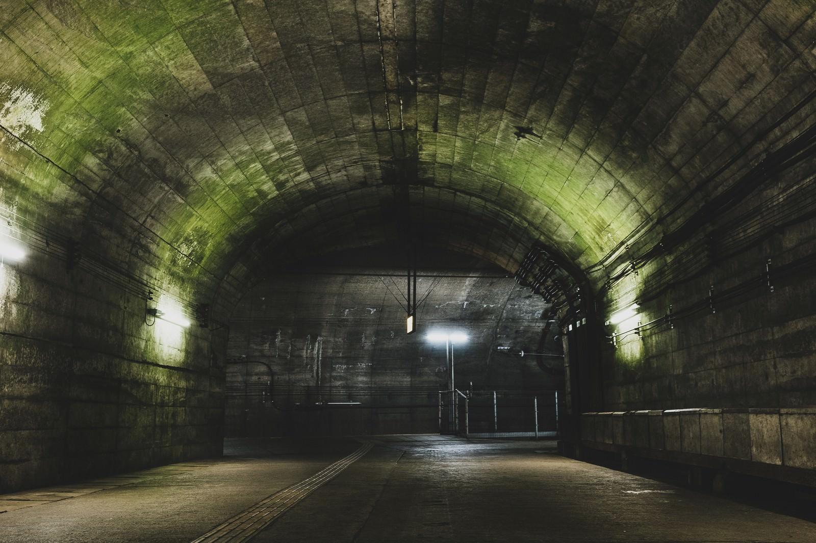 「トンネルを抜けた先にある土合駅地下ホーム」の写真