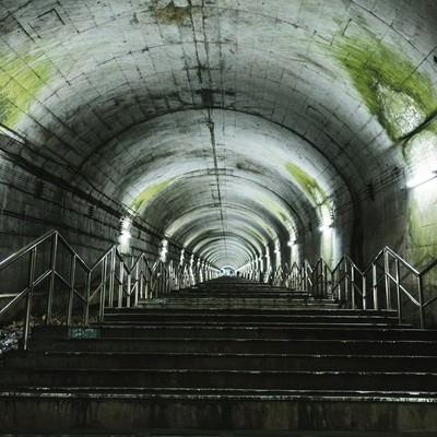 「トンネルの天井にこびり付いた苔(土合駅の階段)」の写真素材