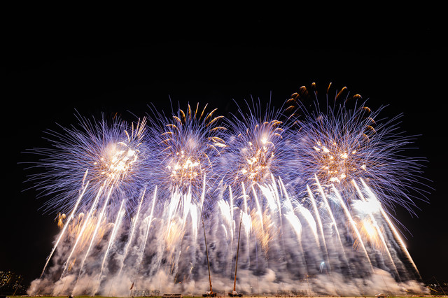次々に打ち上がる花火(江戸川区花火大会)の写真