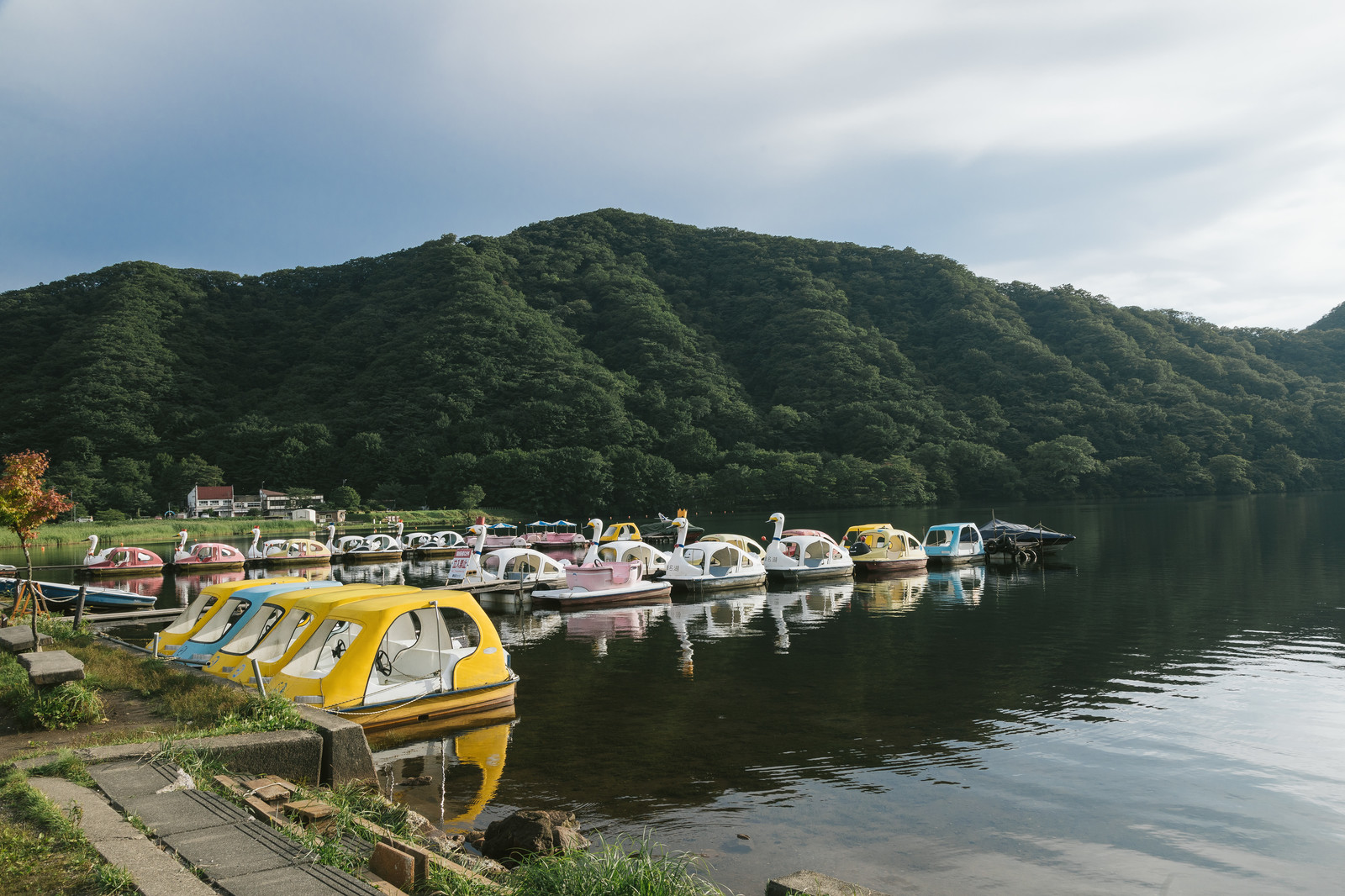 「スワンボート(榛名湖)」の写真