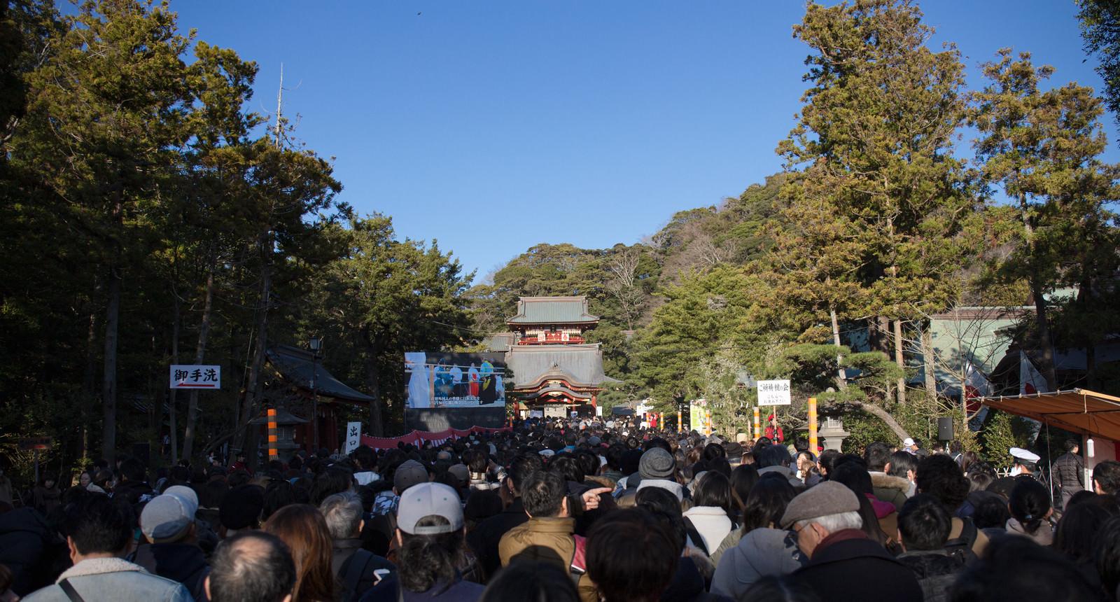 「初詣に訪れる参拝客(鶴岡八幡宮)」の写真