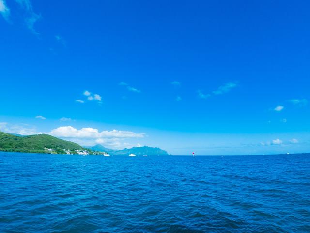 青々としたハワイの海の写真