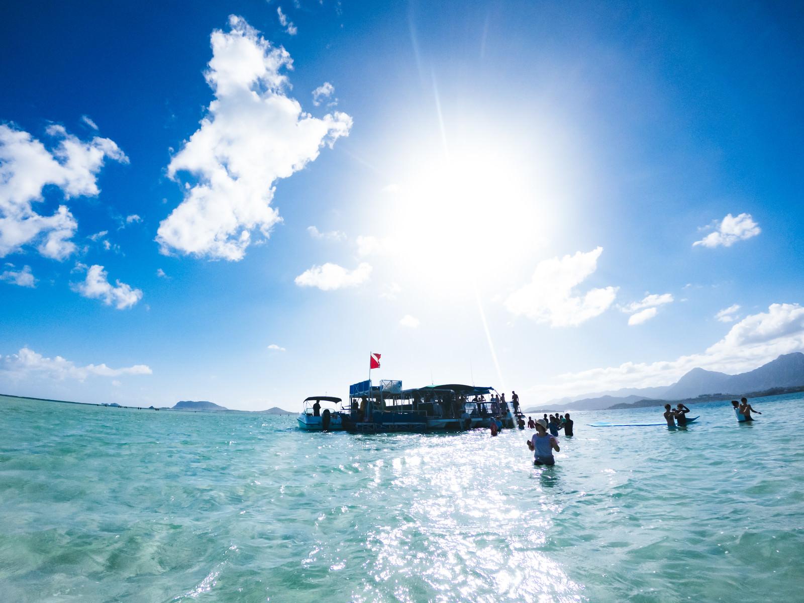「天国の海ツアーの参加者たち」の写真