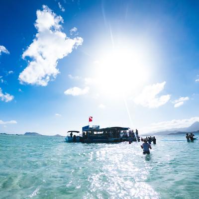 天国の海ツアーの参加者たちの写真