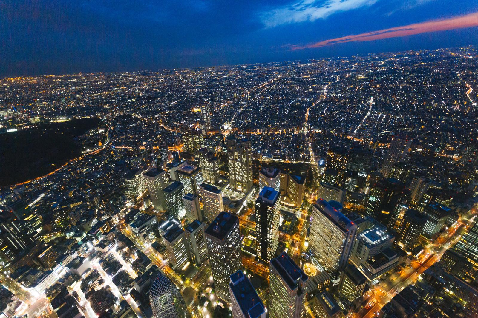 「新宿都庁上空の夜景」の写真