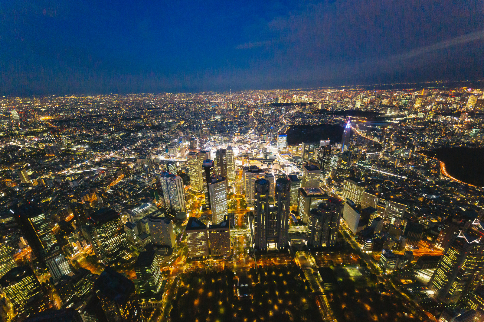「上空から都庁と新宿を見下ろす(夜景)」の写真