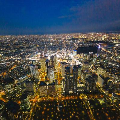 上空から都庁と新宿を見下ろす(夜景)の写真