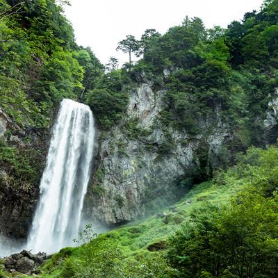 「新緑の平湯大滝」の写真素材