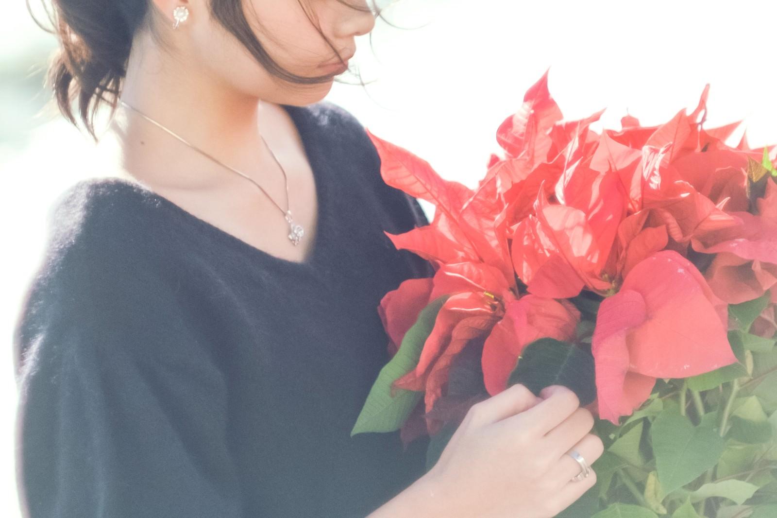 「赤いポインセチアを持つ女性」の写真