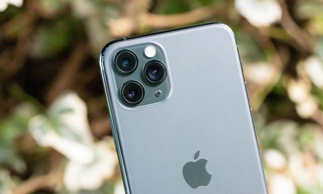 蓮コラではありません! トリプルカメラです。(iPhone 11 Pro)の写真