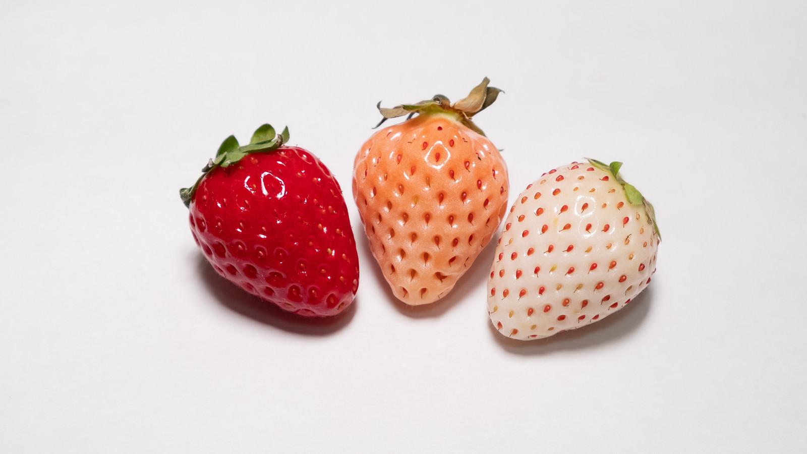 「三種類の色が異なる苺」の写真