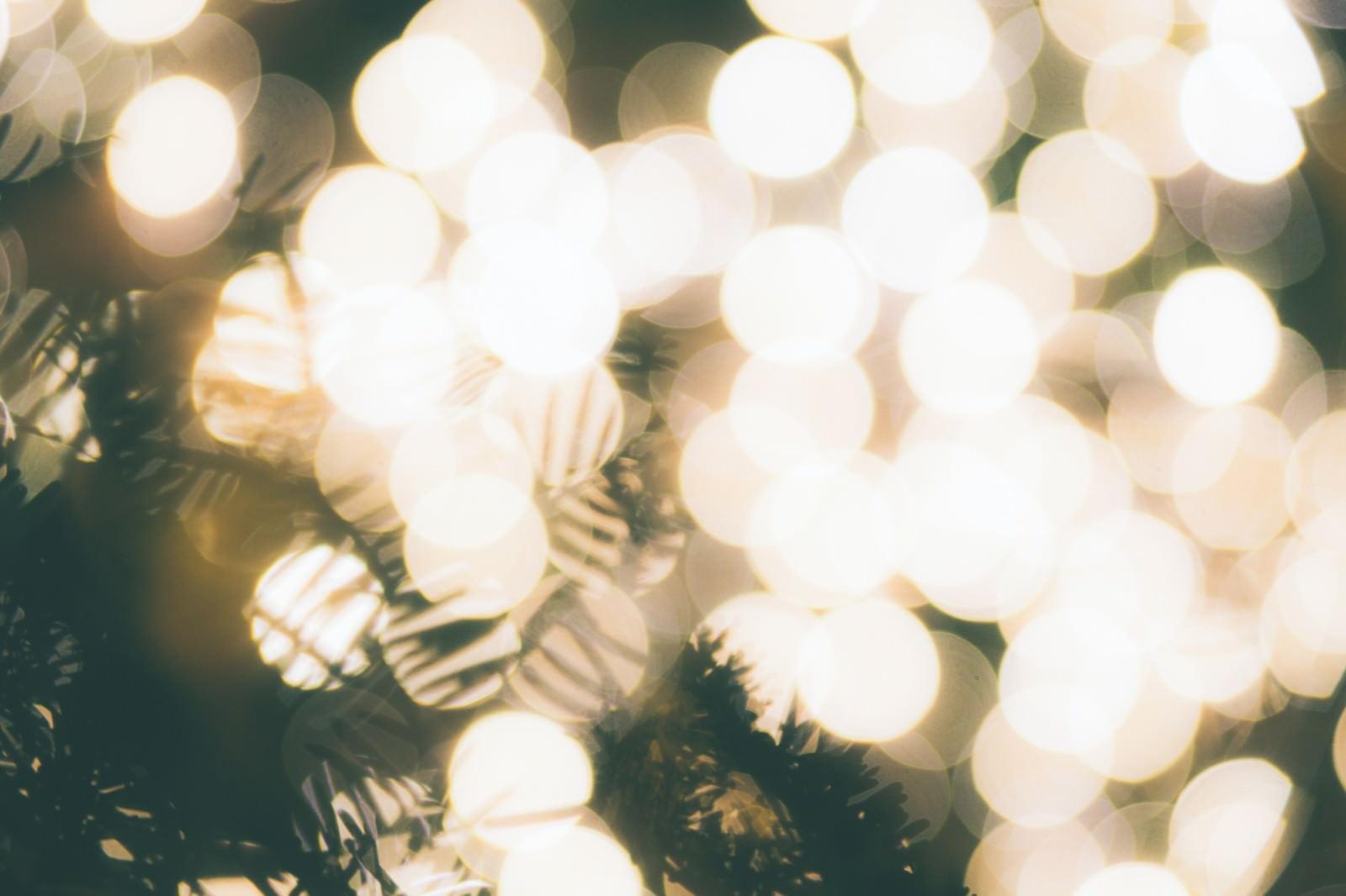 「光で溢れるクリスマスツリー | 写真の無料素材・フリー素材 - ぱくたそ」の写真
