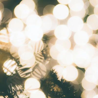 「光で溢れるクリスマスツリー」の写真素材