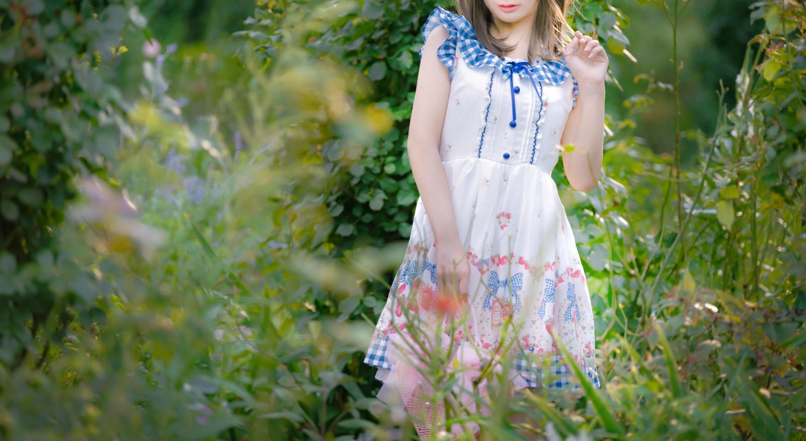 「庭の植物とお嬢様」の写真[モデル:石投げて美奈代]