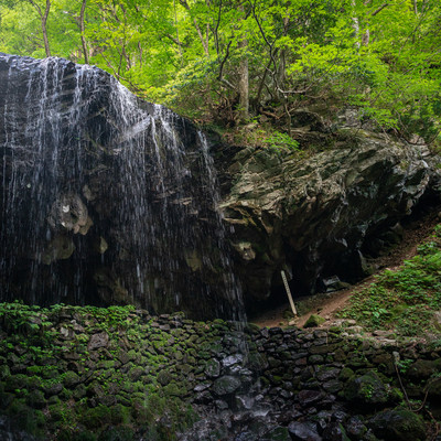 新緑に囲まれる岩井滝の写真
