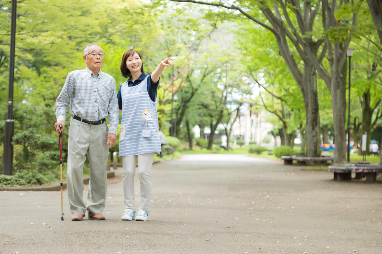 「新緑の公園を散歩する」の写真[モデル:まーちゃん yumiko]
