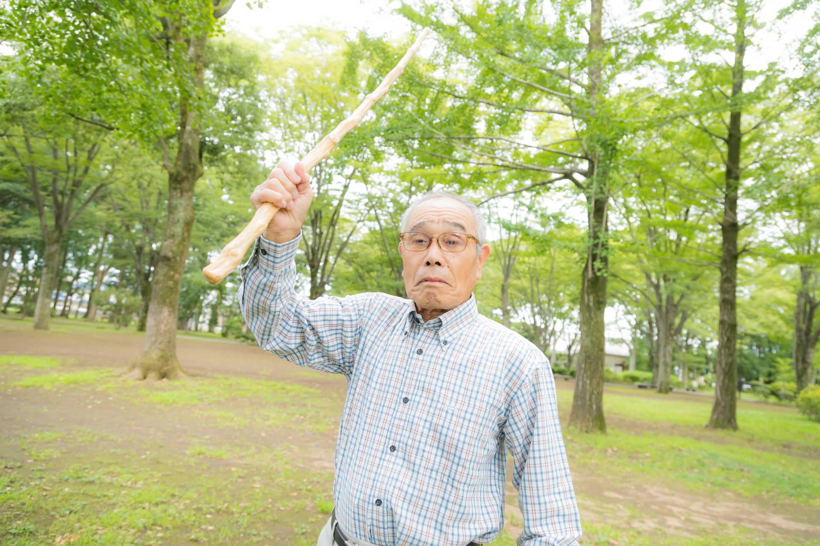 「激おこのお爺さんが持っていた杖を振りかざしてきた」の写真[モデル:まーちゃん]