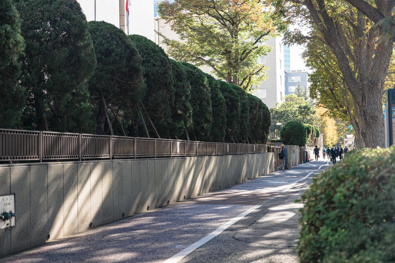 「裁判所前の通り(歩道)」の写真