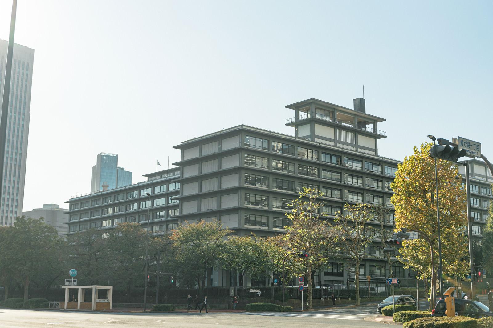 「外務省と街路樹」の写真