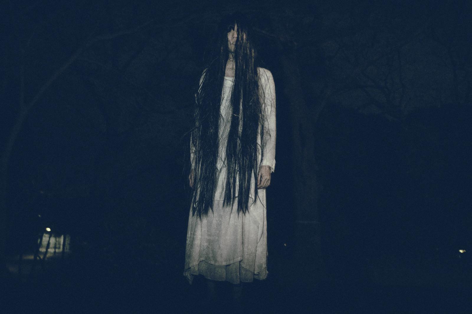 「真夜中の公園でたち塞ぐ亡霊」の写真[モデル:緋真煉]