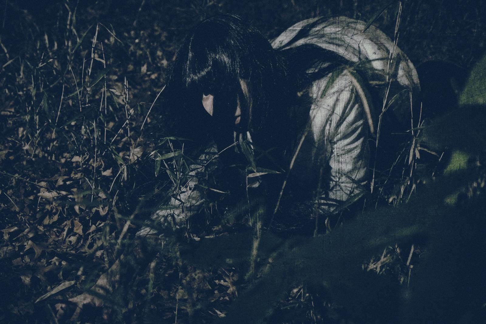 「深夜に草むらで落とした小銭を探す女性」の写真[モデル:緋真煉]