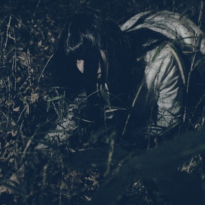 「深夜に草むらで落とした小銭を探す女性」の写真素材